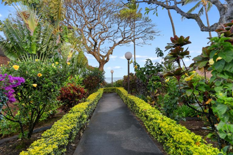 Photo of resort ground showing a pathway with plants and trees