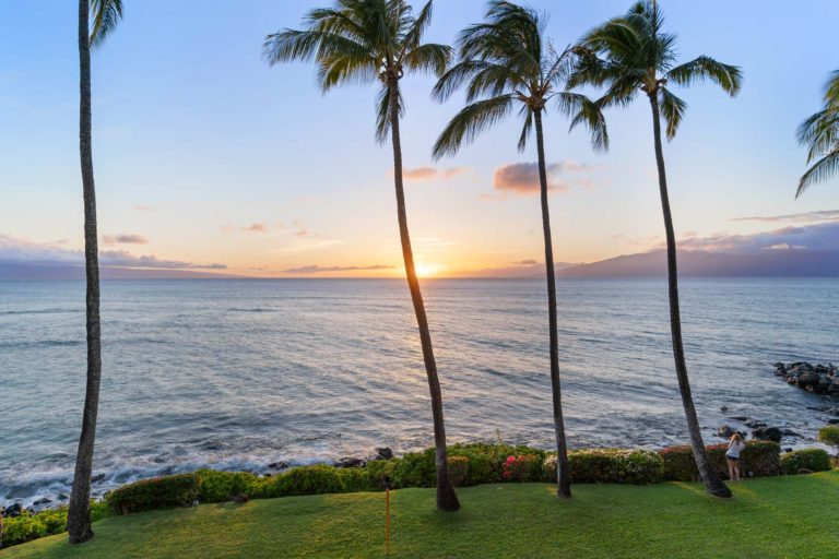 Photo of sunset with palm trees around.