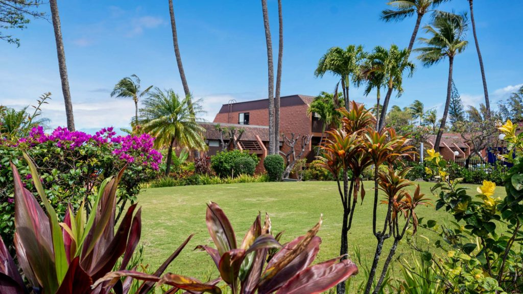Photo of the resort surrounded by plants