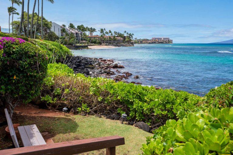 Photo of a bench facing the ocean